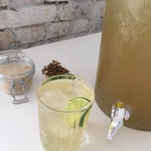 Cool Mint Iced Tea